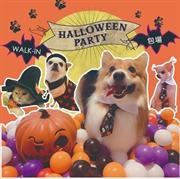 Halloween Party 萬聖節 寵物派對★逢星期日★